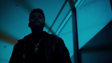 #2 The Weeknd - Starboy - 43 plays
